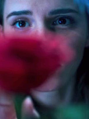 """Emma Watson Finds the Enchanted Rose In First """"Beauty and the Beast"""" Teaser Trailer"""