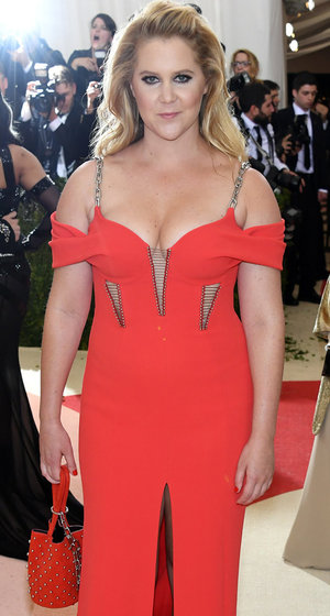 See Why Amy Absolutely Despised Attending the Met Gala!